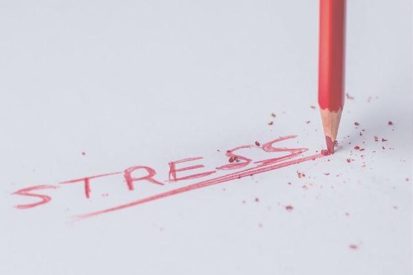 病院管理栄養士が感じるストレス